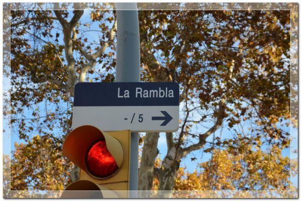 2014-barcelona-7795F0F5C2-D02C-F366-6834-B96539AAD6B9.jpg