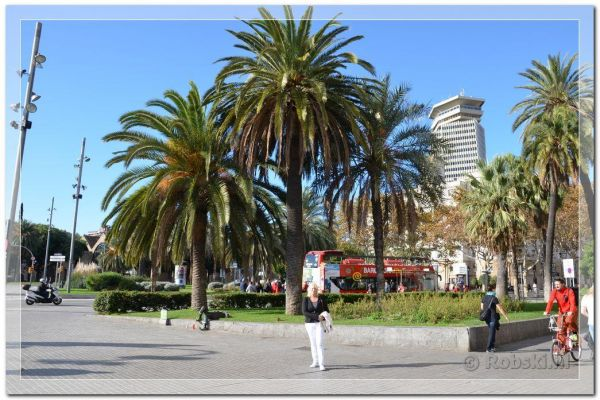 2014-barcelona-92E1195FFD-DEA3-869D-1161-1B4CF95F283D.jpg